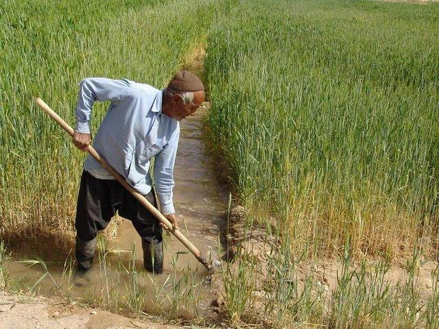 قانونی که اراضی کشاورزی را کوچک و کوچکتر می نماید