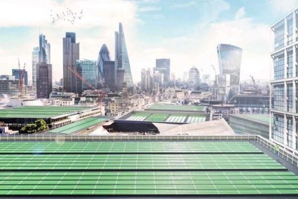 فراوری صفحه خورشیدی زیستی برای تصفیه هوا