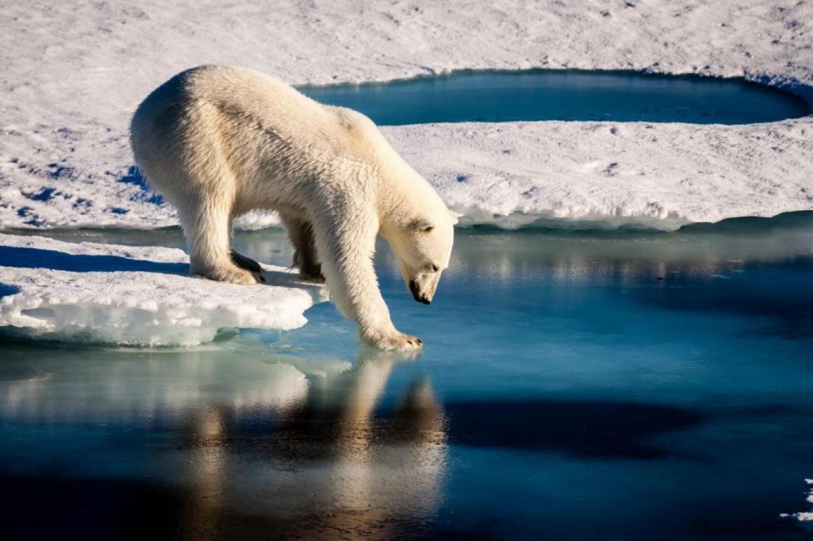 رکورد جدید دما در قطب شمال