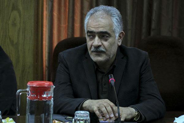 گل محمدی: 80 درصد فعالیت های ورزشی استان تهران از سرگرفته شده است